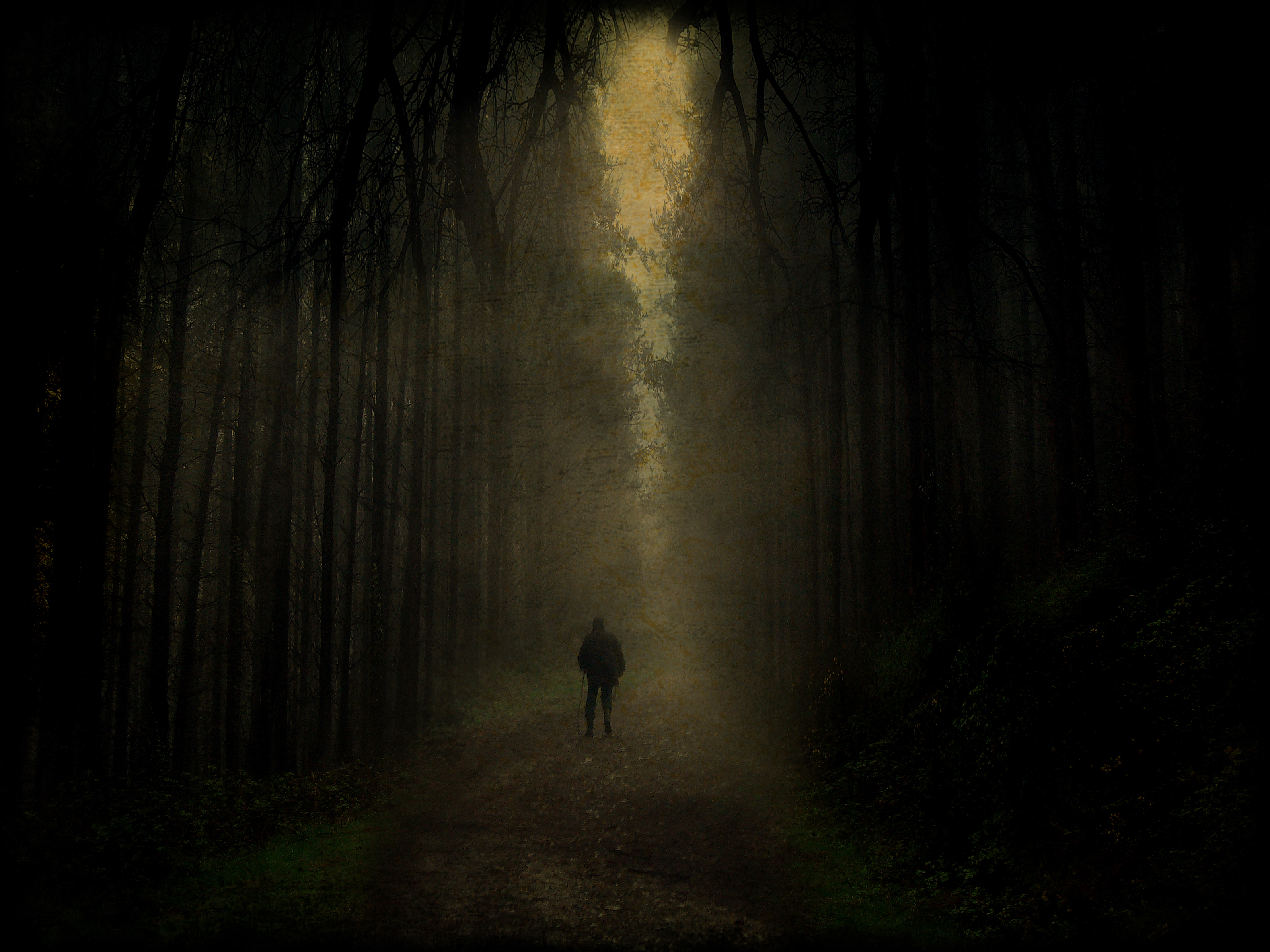 http://soulpossession.files.wordpress.com/2011/11/dark_forest_walk_by_tadbeer.jpg